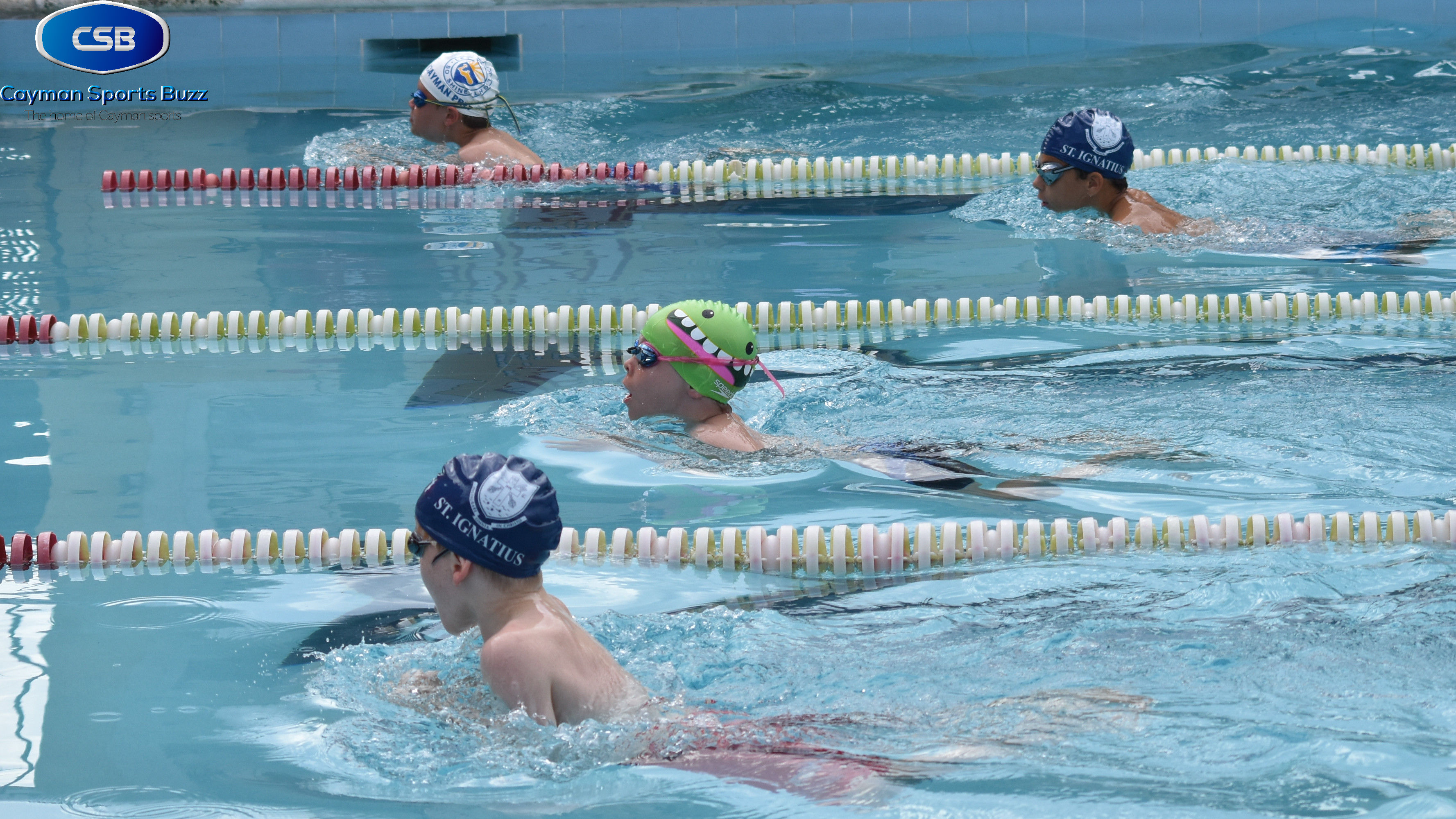 inter primary school swimming meet backdrops